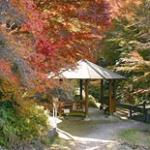 愛知の紅葉・2016豊川市宮路山もみじまつり・アクセスと注意点