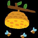 アシナガバチ・スズメバチ・ミツバチ 巣の駆除と応急処置・要注意点