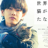 映画【世界から猫が消えたなら】ネタバレの内容と感想&キャストと評価