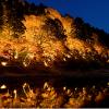 【香嵐渓もみじ祭り】2018開催期間・アクセス方法&見所とライトアップ