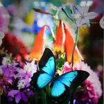 「蜷川実花展」豊川桜ヶ丘ミュージアム・国内初の桜ルームがスゴイ!